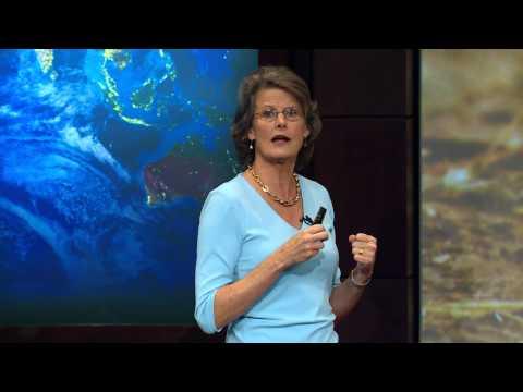 Humans, Biodiversity, and Habitat Loss — HHMI BioInteractive Video