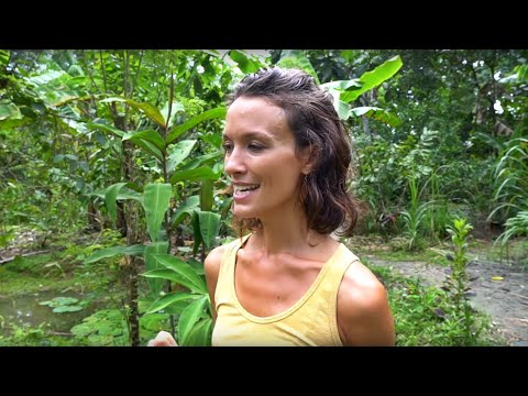 Chinampas: Floating Gardens of Costa Rica + Permaculture Farm Tour