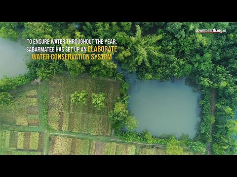 How a farmer turned 90 acres of wasteland into a lush green forest in Odisha