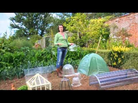 The English Garden Editor's choice - Cloches
