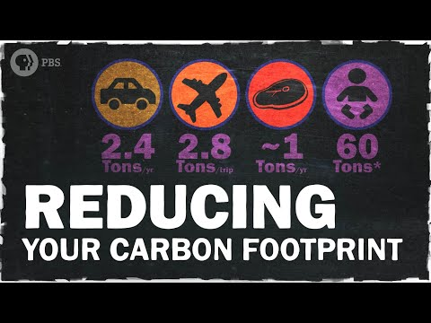 The Best Ways to Reduce Your Carbon Footprint | Hot Mess 🌎