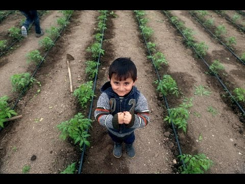 Build Sustainable Opportunities for Women Farmers in Armenia