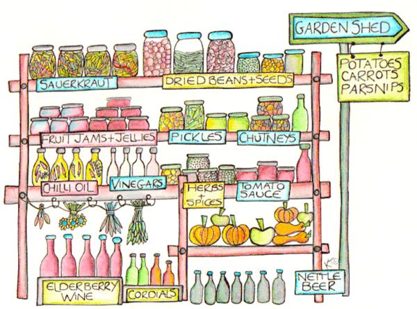root cellar illustration
