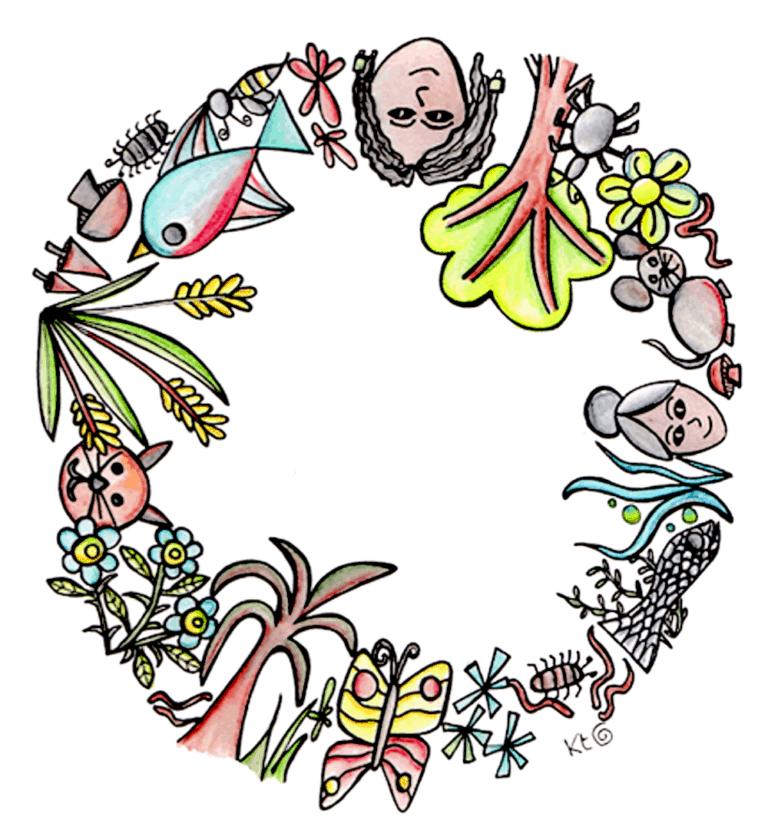 symbiosis illustration Katie Shepherd
