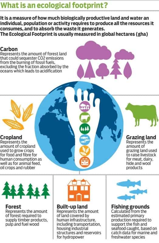 what is an ecological footprintinfographic