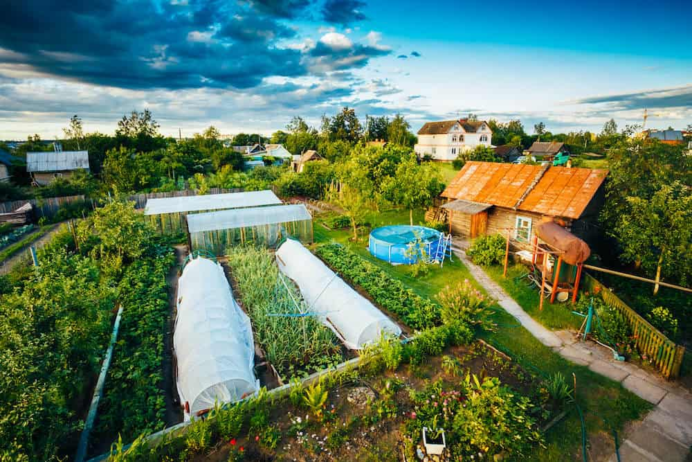 permaculture_homestead
