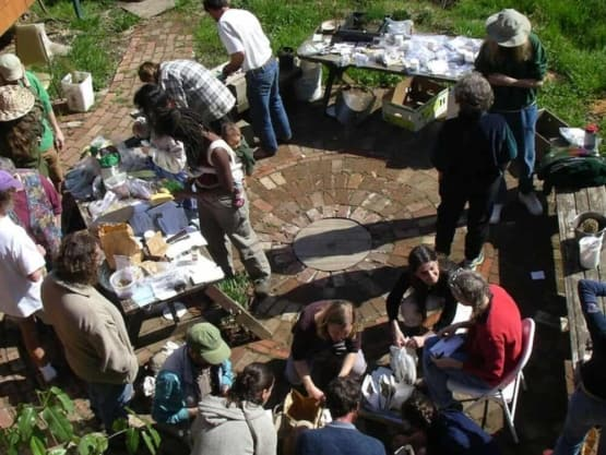 seed swap with tables and people talking