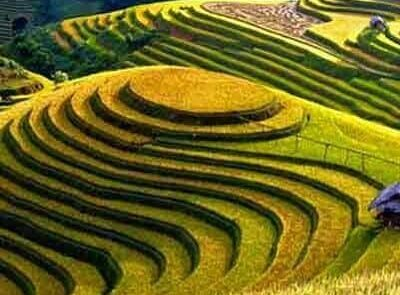 ancient terraces using regional water sharing techniques
