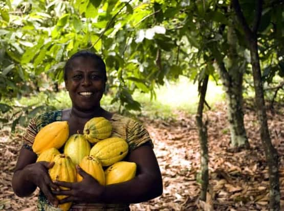 woman holding cacao fruits in forest garden