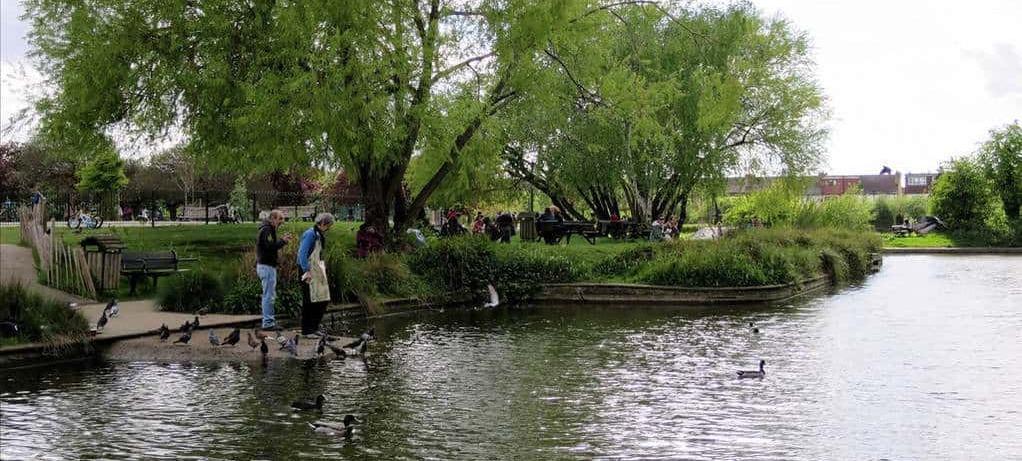 people at lake