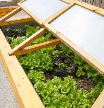 Homemade greenhouse raised garden bed