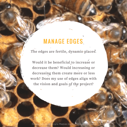 bees in beehive are managing edges