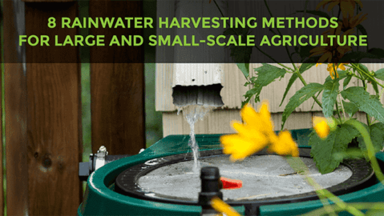 rainwater harvesting methods