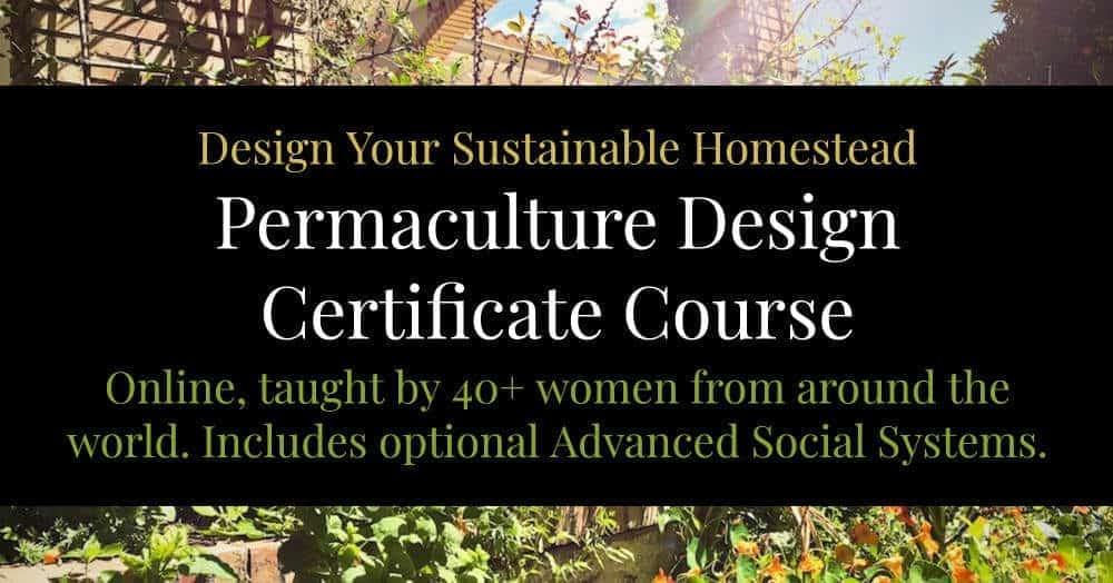 best permaculture design course online