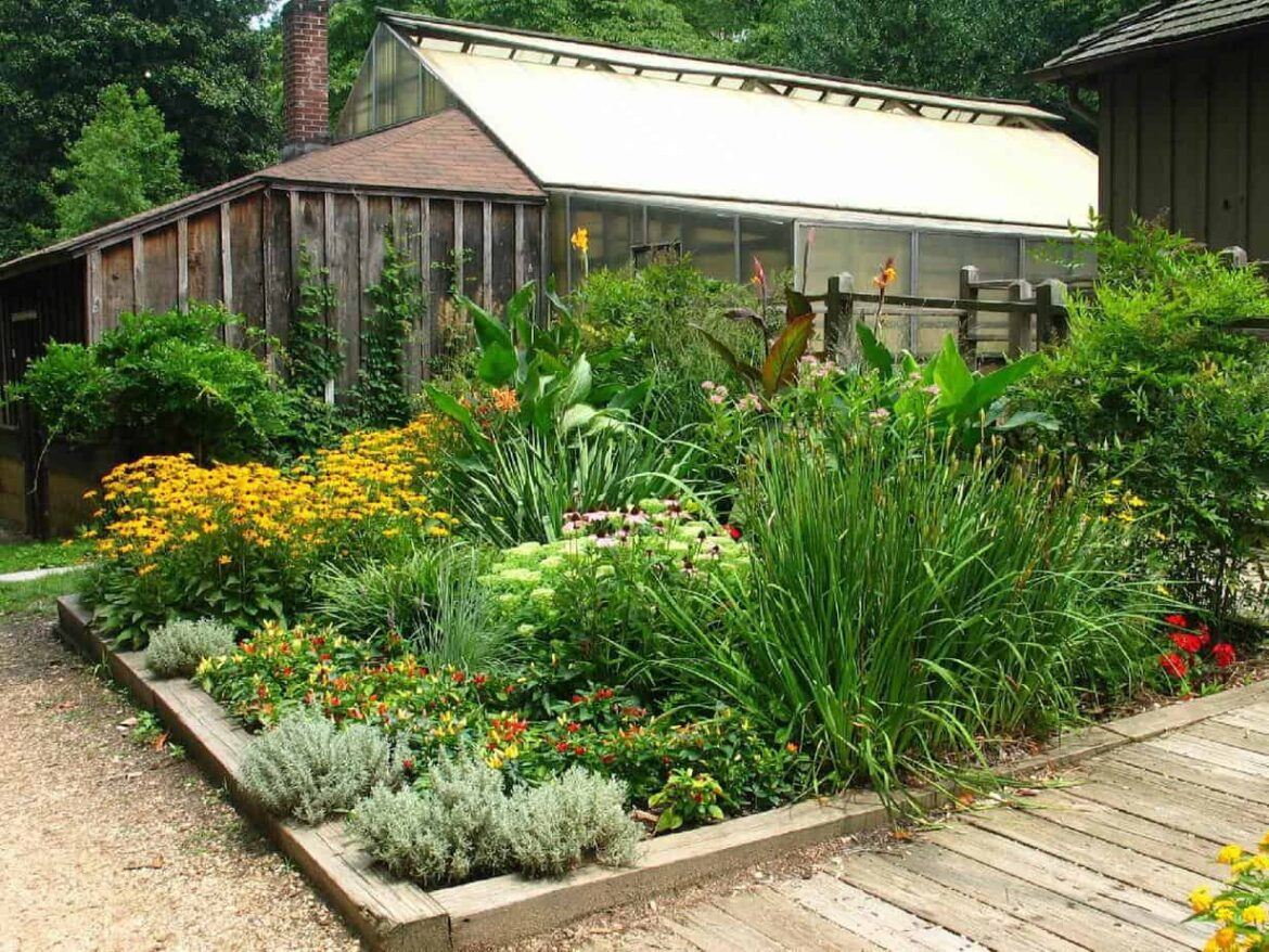 beautiful garden bed of ornamentals, flowers and herbs in front of greenhouse