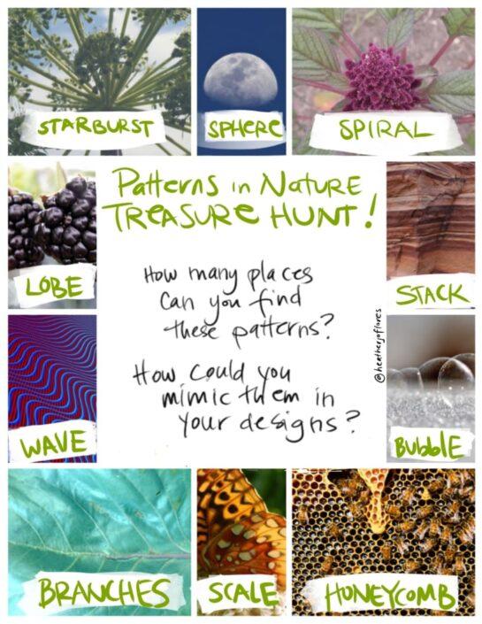 treasure hunt of patterns in nature