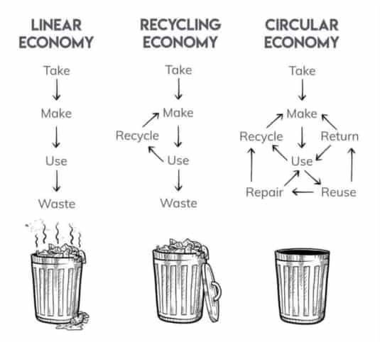 waste in linear and circular economies