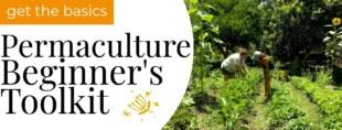 permaculture beginner toolkit