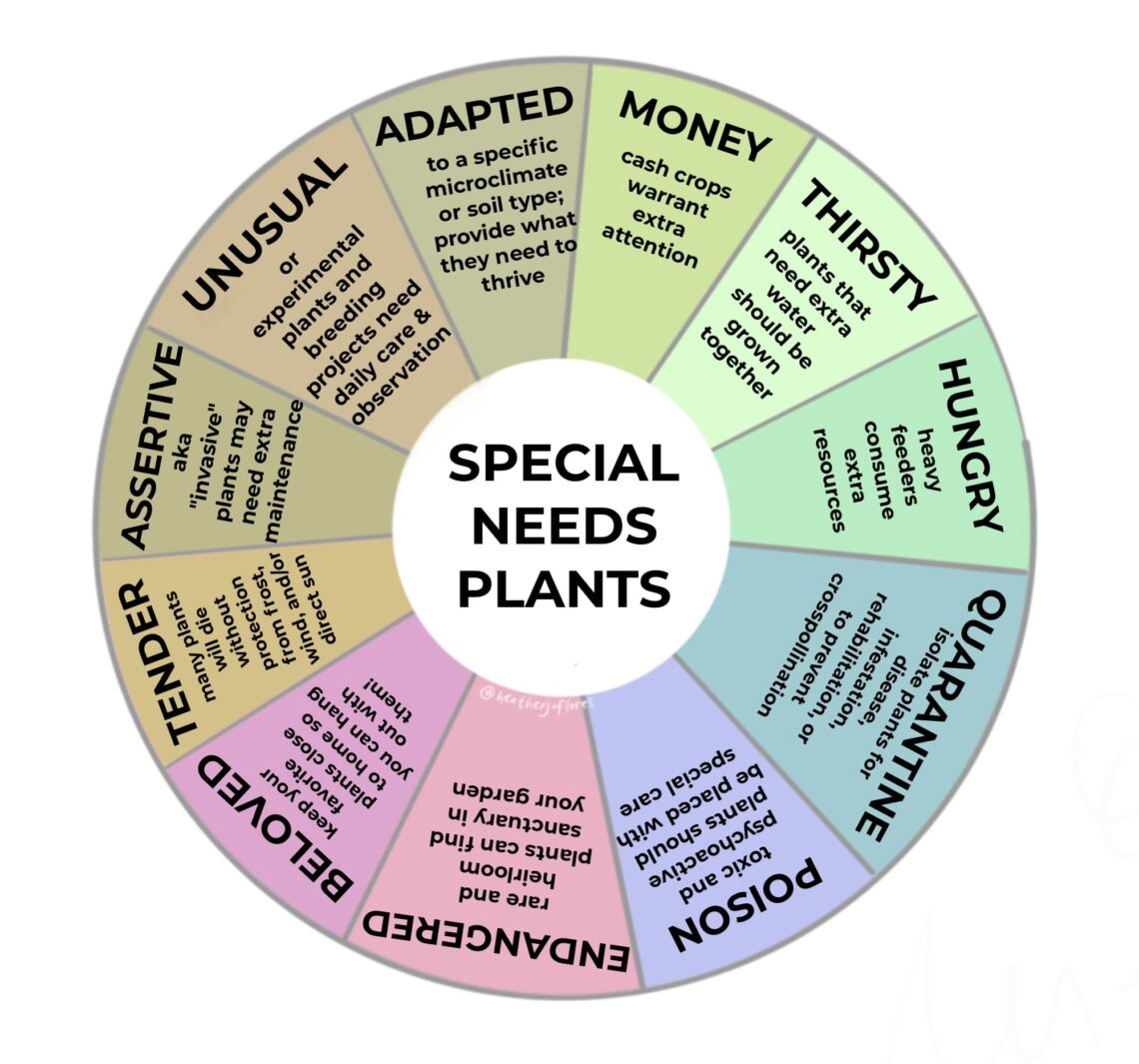 special_needs_plants infographic by Heather Jo Flores