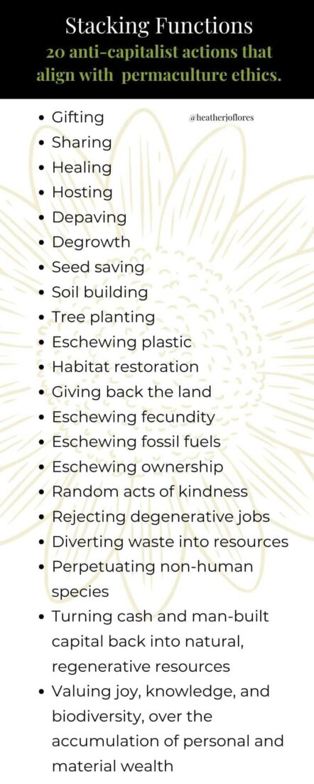 anticapitalist permaculture infographic by Heather Jo Flores