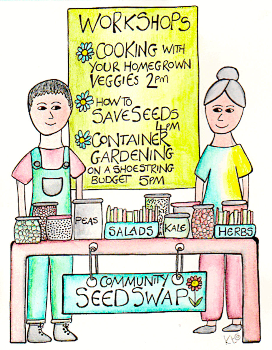 Seed Swap illustration by Katie Shepherd