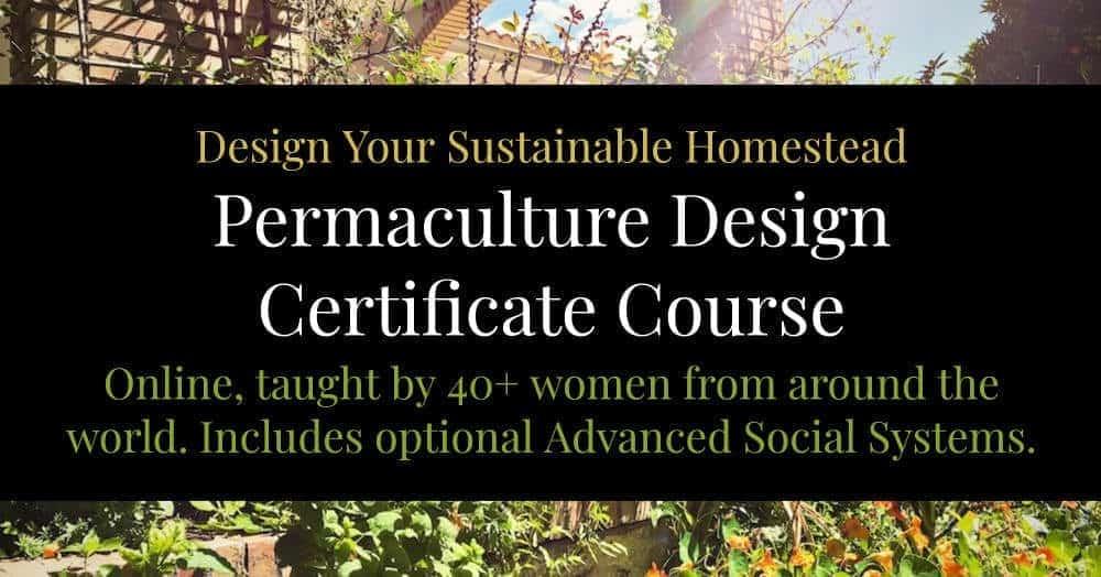 best permaculture design course online