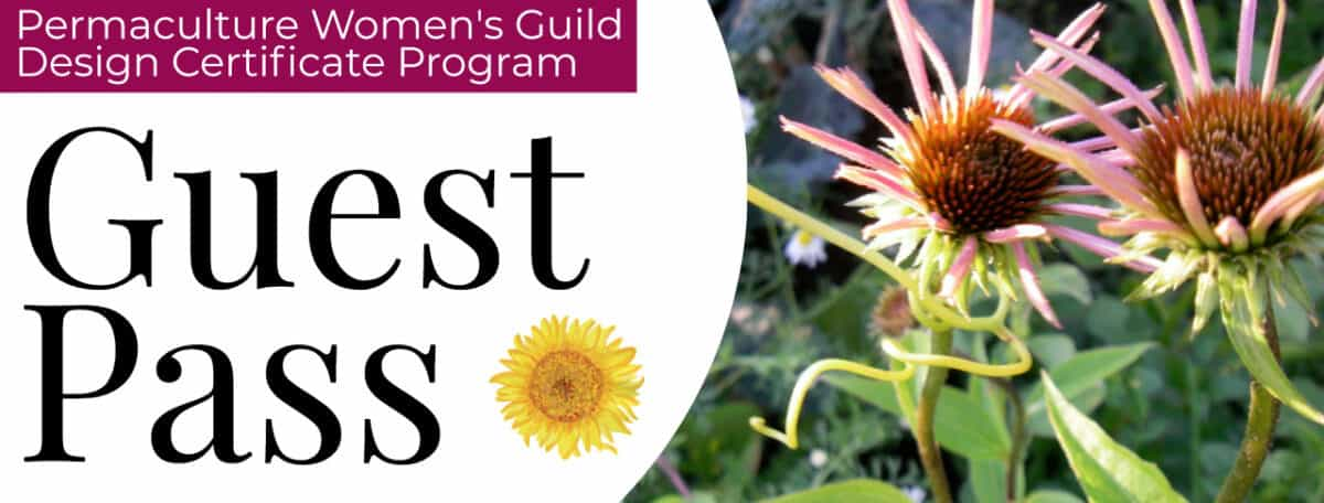 permaculture design course free guest pass