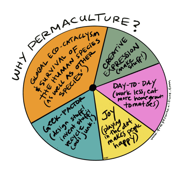 why permaculture pie chart