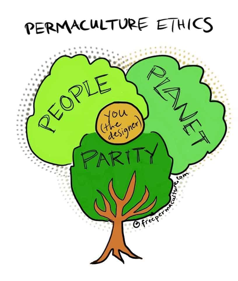tree of permaculture ethics illustration by Heather Jo Flores